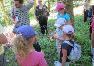 Atelier découverte des champignons