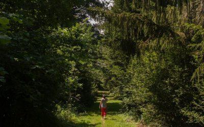 24 heures: «Le Parc naturel du Jorat à la rencontre des citoyens»